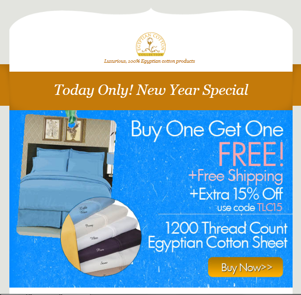 Today Only New Year Exclusive Discount